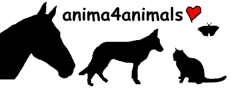 Institut für Tierkommunikation